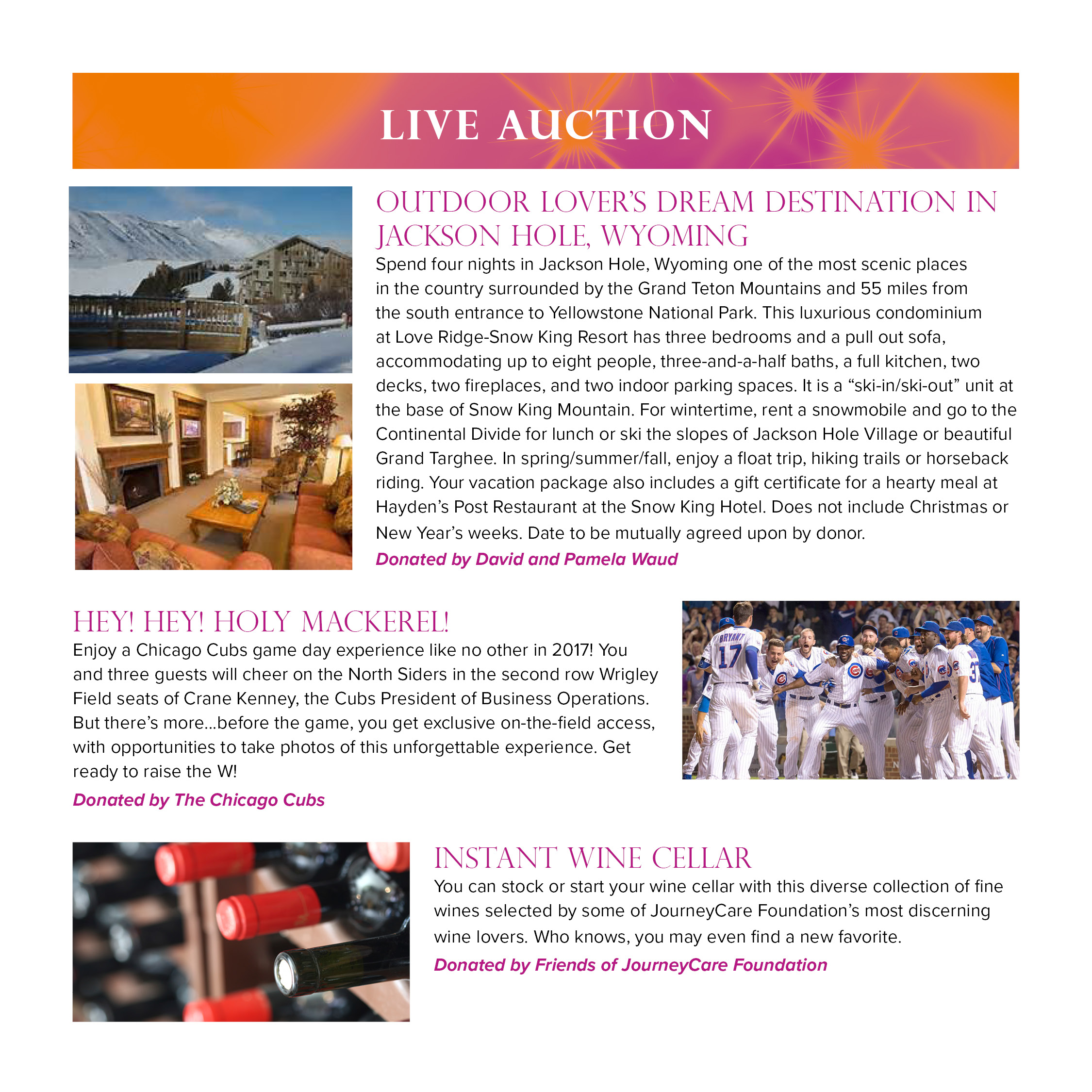 2016-jcgala-auction