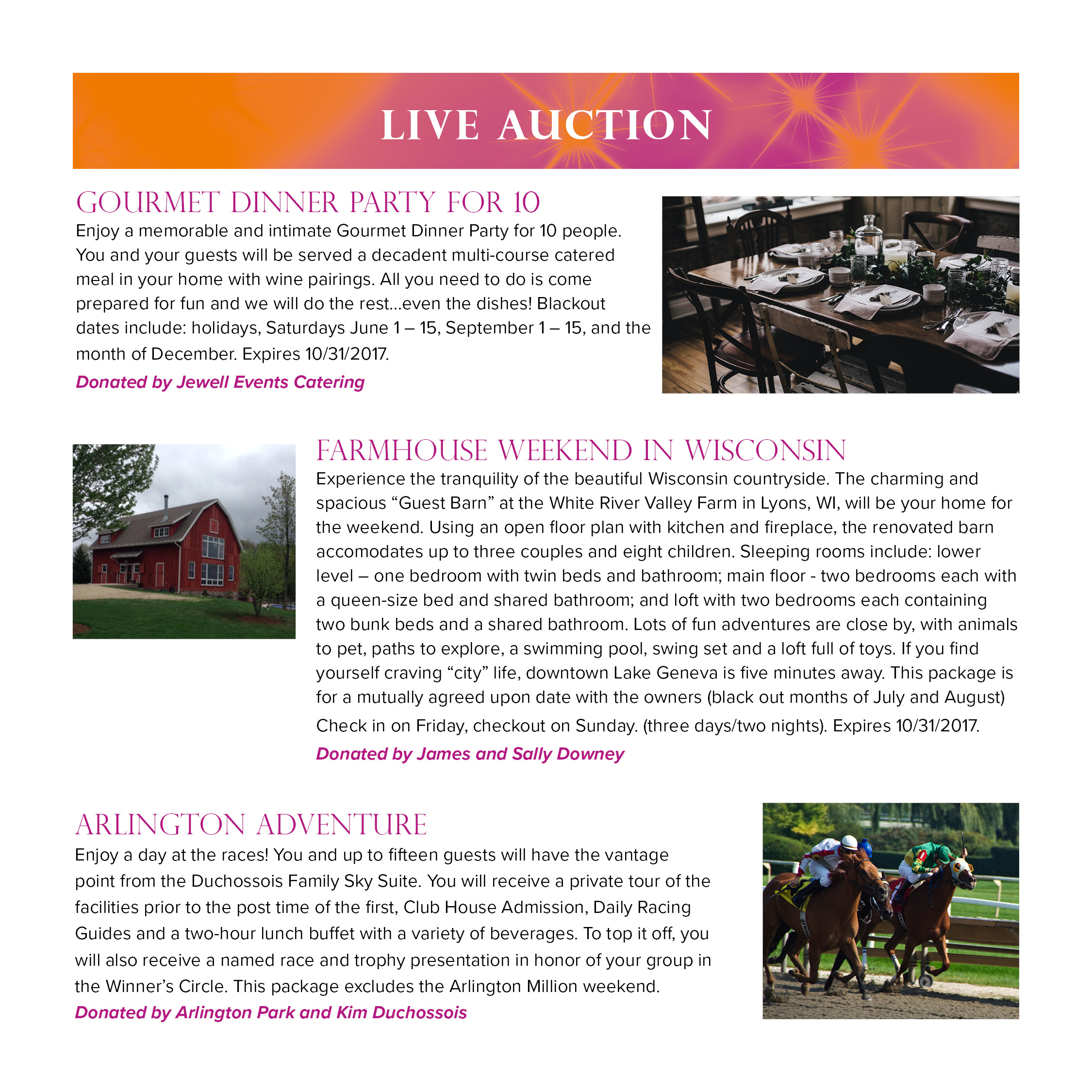 2016-jcgala-auction1